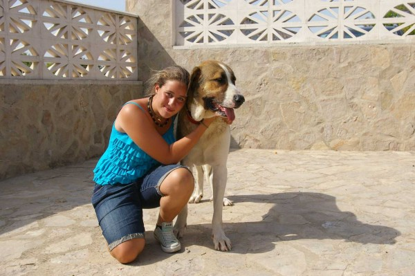 Pet Friendly Accommodation Spain