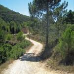 Single-Track-Spain