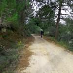 Single-Track-Valencia