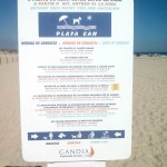 pet friendly gandia